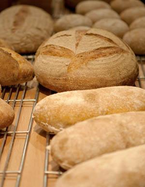 Andrew's sourdough breads