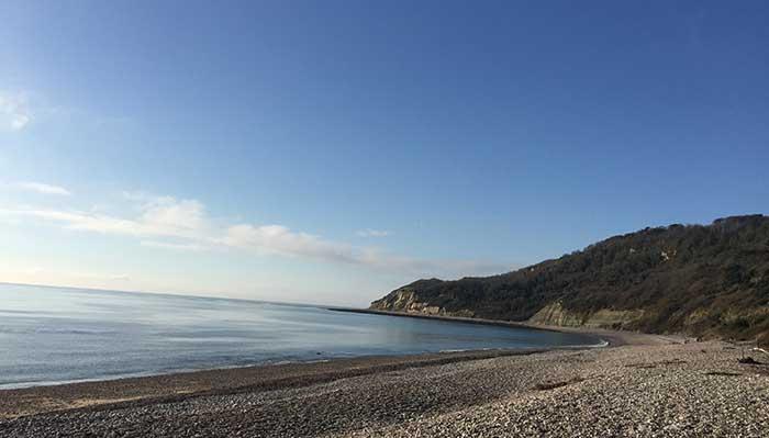 desertd-beach-lyme-regis