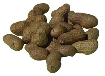 peanuts-in-shell