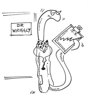 The Worm doctor