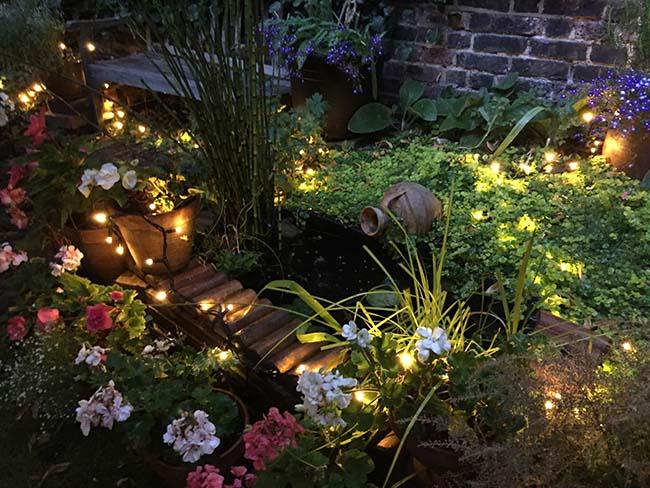 garden lit - pond