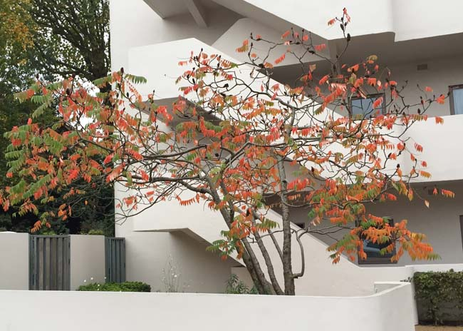 Outside the Isokon