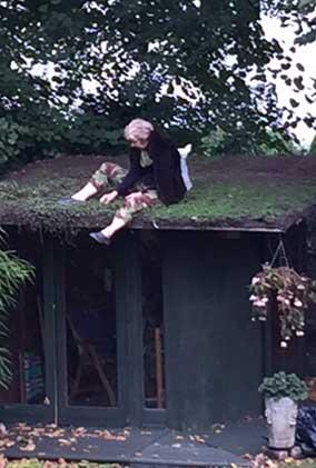 weeding roof